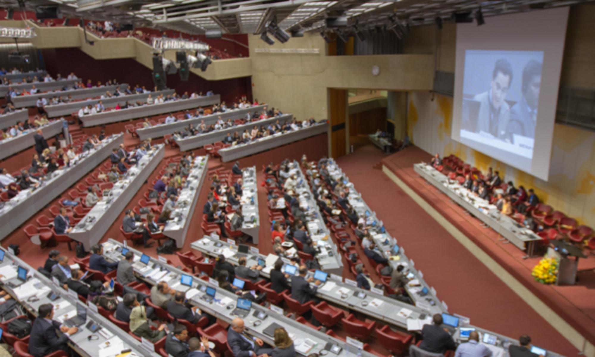 COP3 Minamata Convention on Mercury